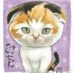 可愛いペットの似顔絵をネット通販でお描きします。猫のイラストとその料金を3点ピックアップ